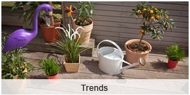 terrassendielen - trends